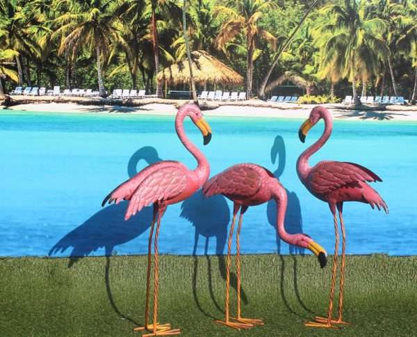 Flamingo ca 75 cm hoog