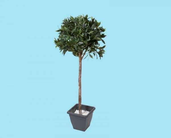 Kunstboom 150 cm