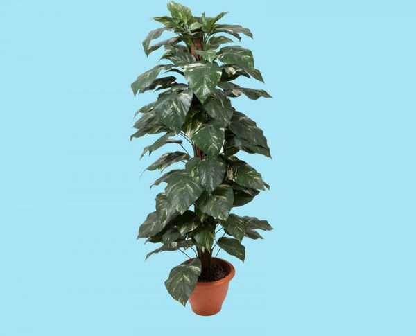 Kunstplant 150 cm